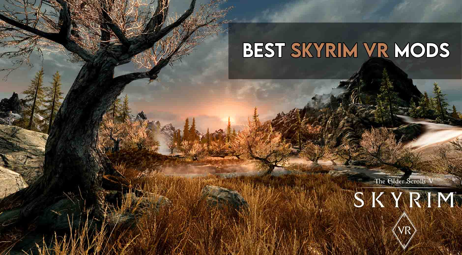 6 Best Skyrim VR Mods in 2021